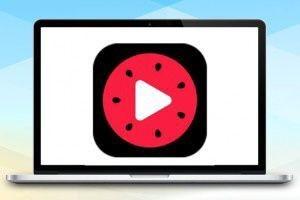 西瓜视频引流脚本5.0